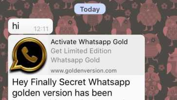 WhatsApp Gold Version